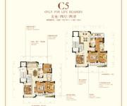 花园洋房 C5 五室四厅四卫