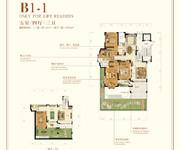 花园洋房B1-1 五室四厅四卫