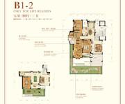 花园洋房 B1-2 五室四厅三卫