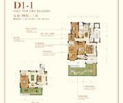 花园洋房 D1-1 五室四厅三卫