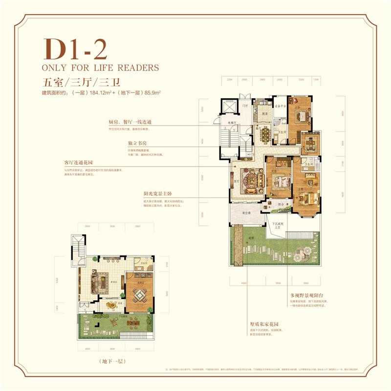 花园洋房 D1-2 五室三厅三卫